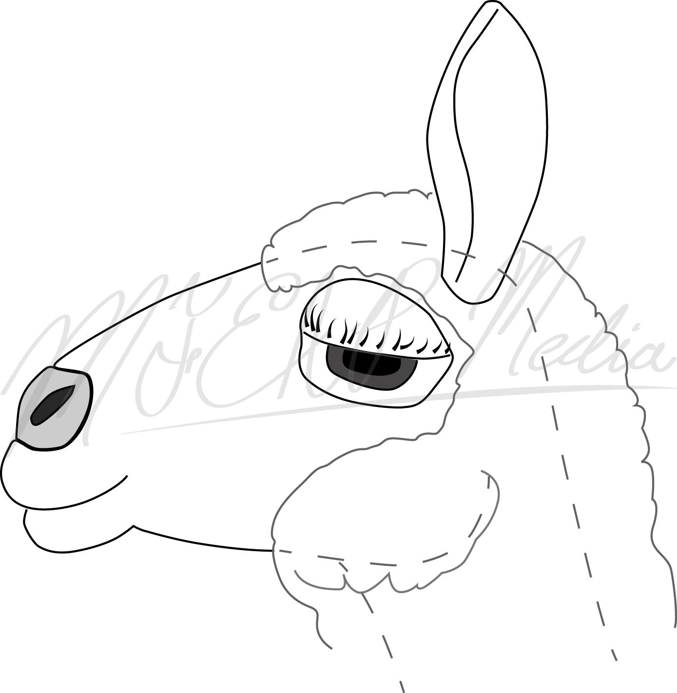 Sheephead.jpg
