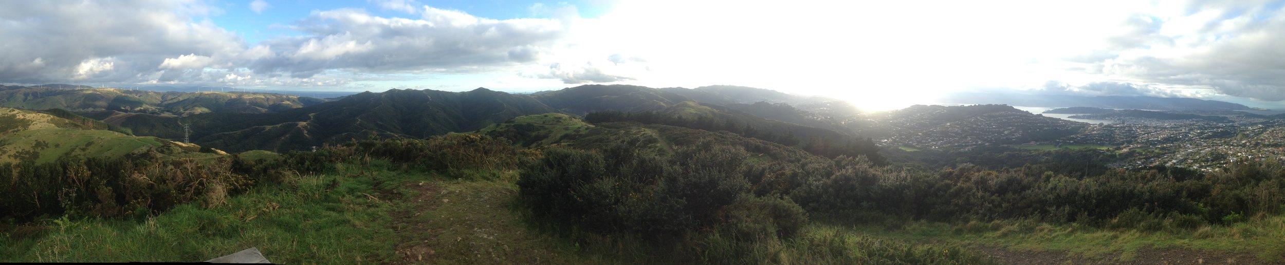 The skyline trial above Wellington