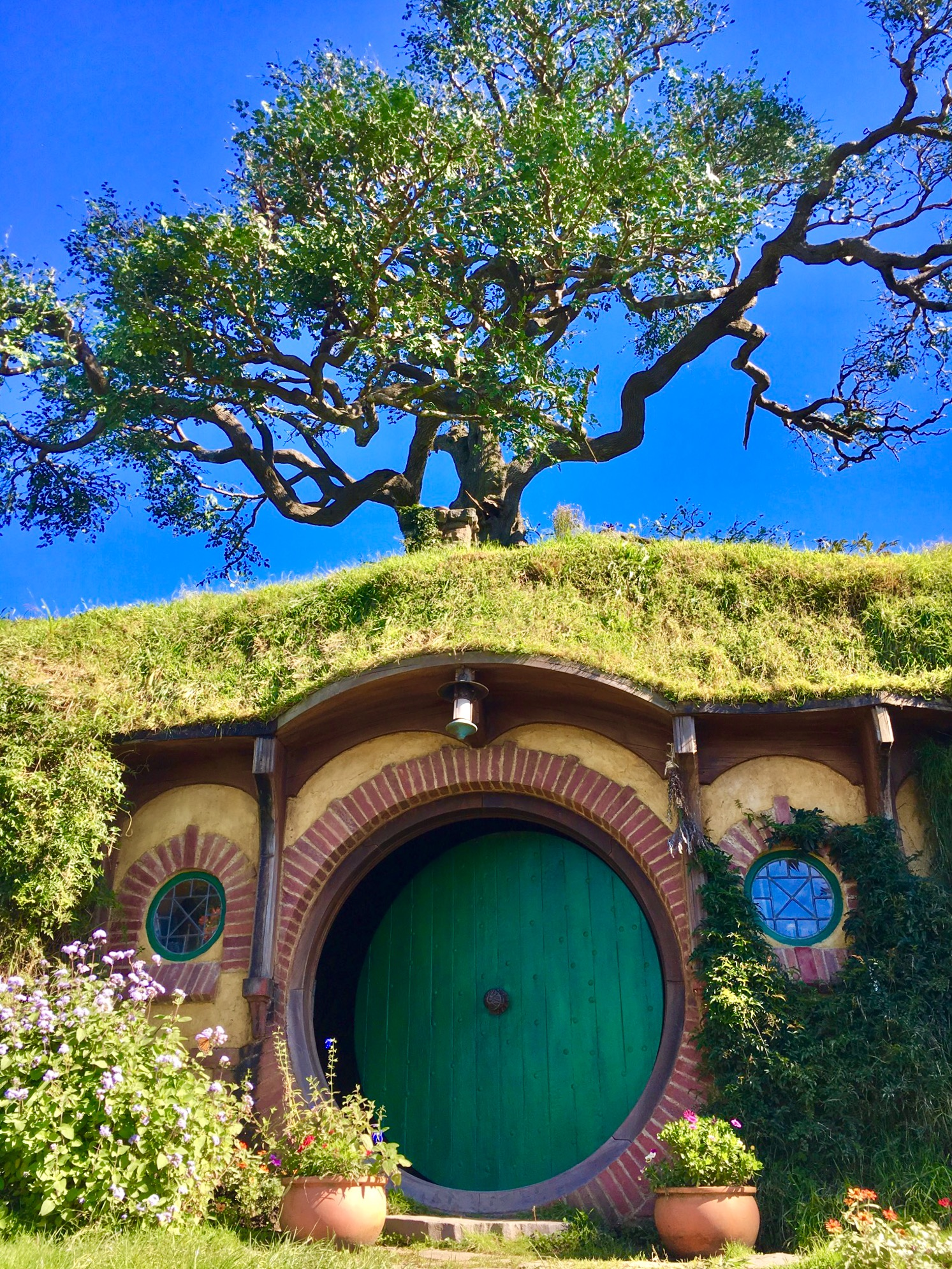 That tree on top is fake.  Did Bilbo know?