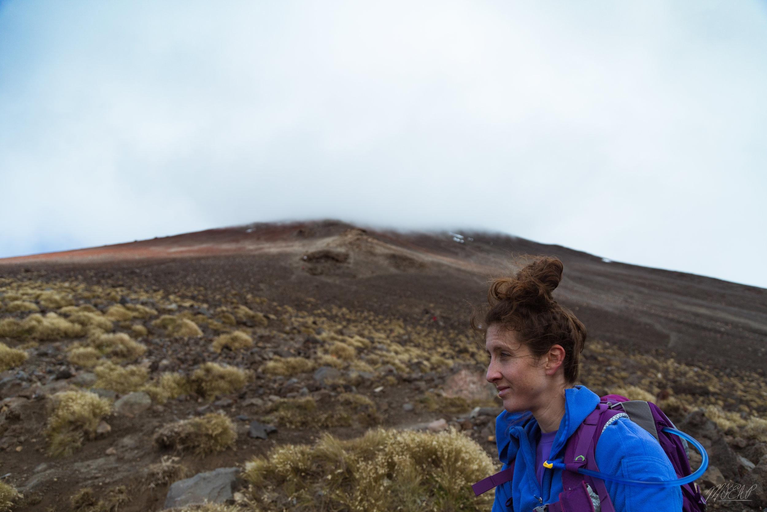 Looking back up Mt. Doom
