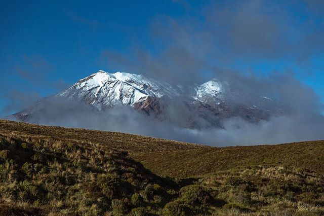 Tongariro trailhead. 🇳🇿 -  From my new blog post (link in bio)