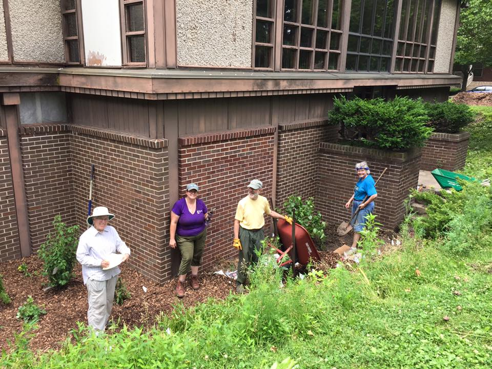 Green UUs replant slopes with native plants