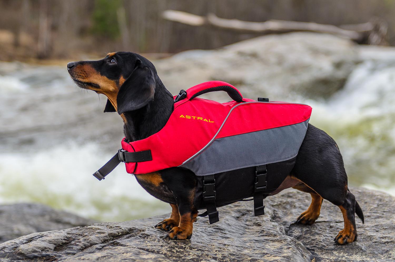 Astral-Bird-Dog-Life-Vest