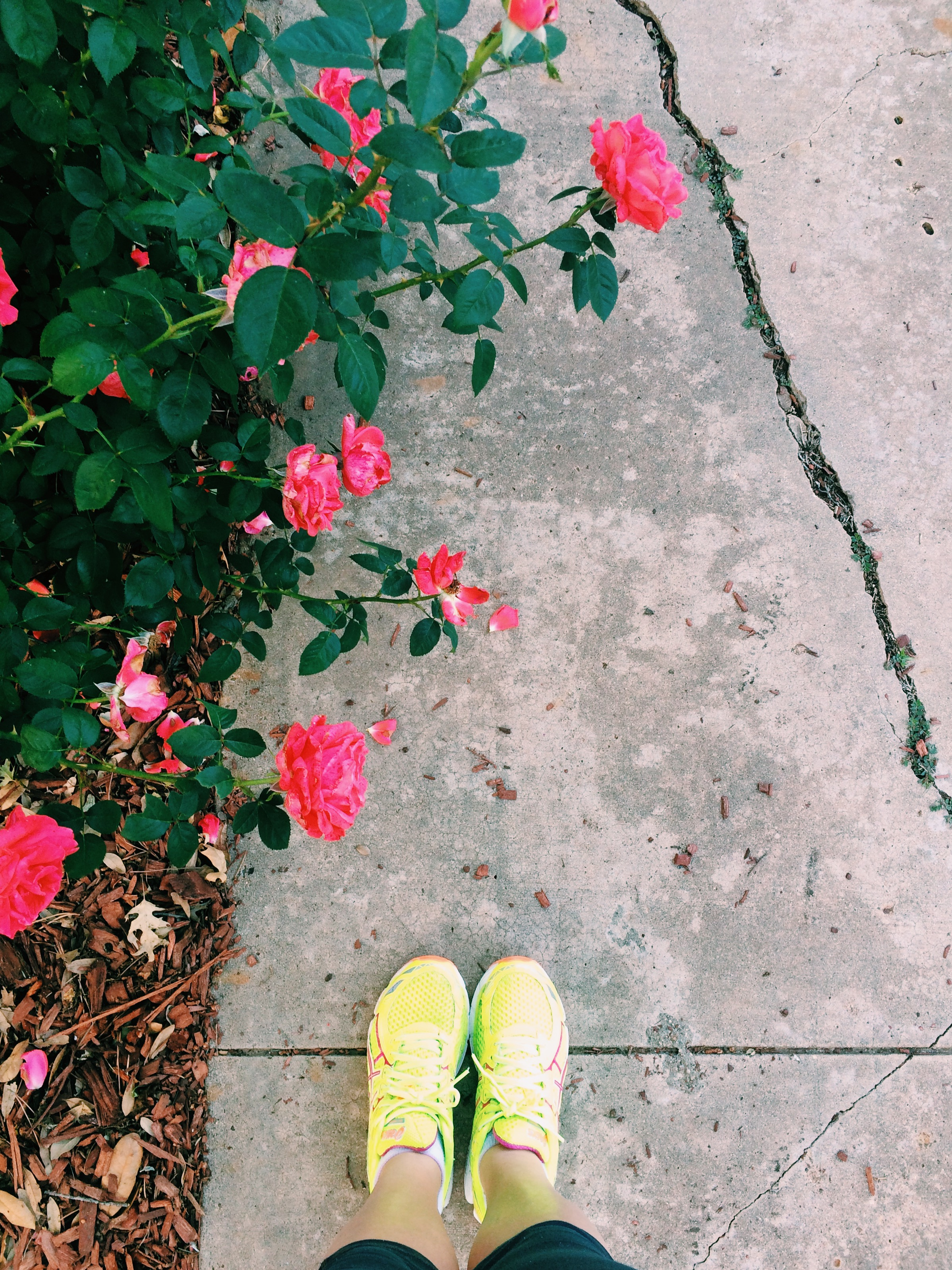 neon running shoes and flowers