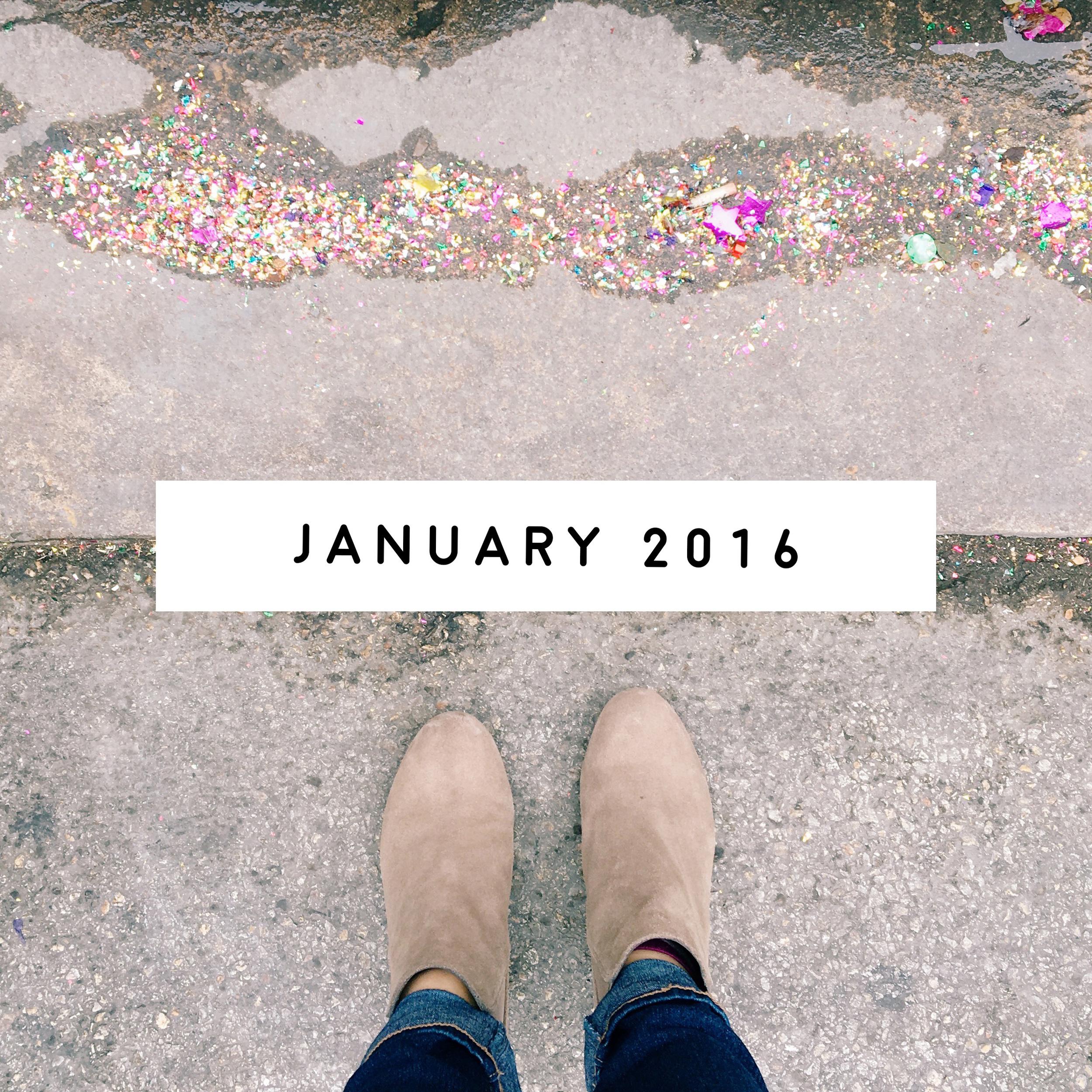 January in Review | ashleyjoanna.com