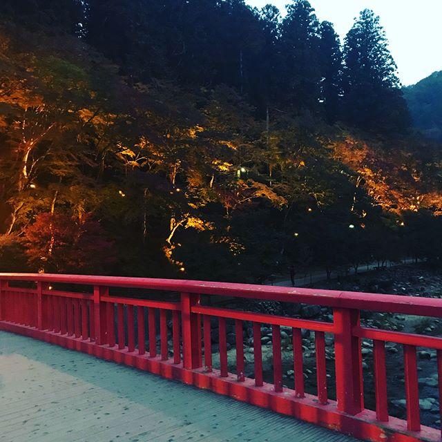 あんま紅葉してなかったけど 小籠包うまかったから しあわせでした😳✨🍁 #香嵐渓