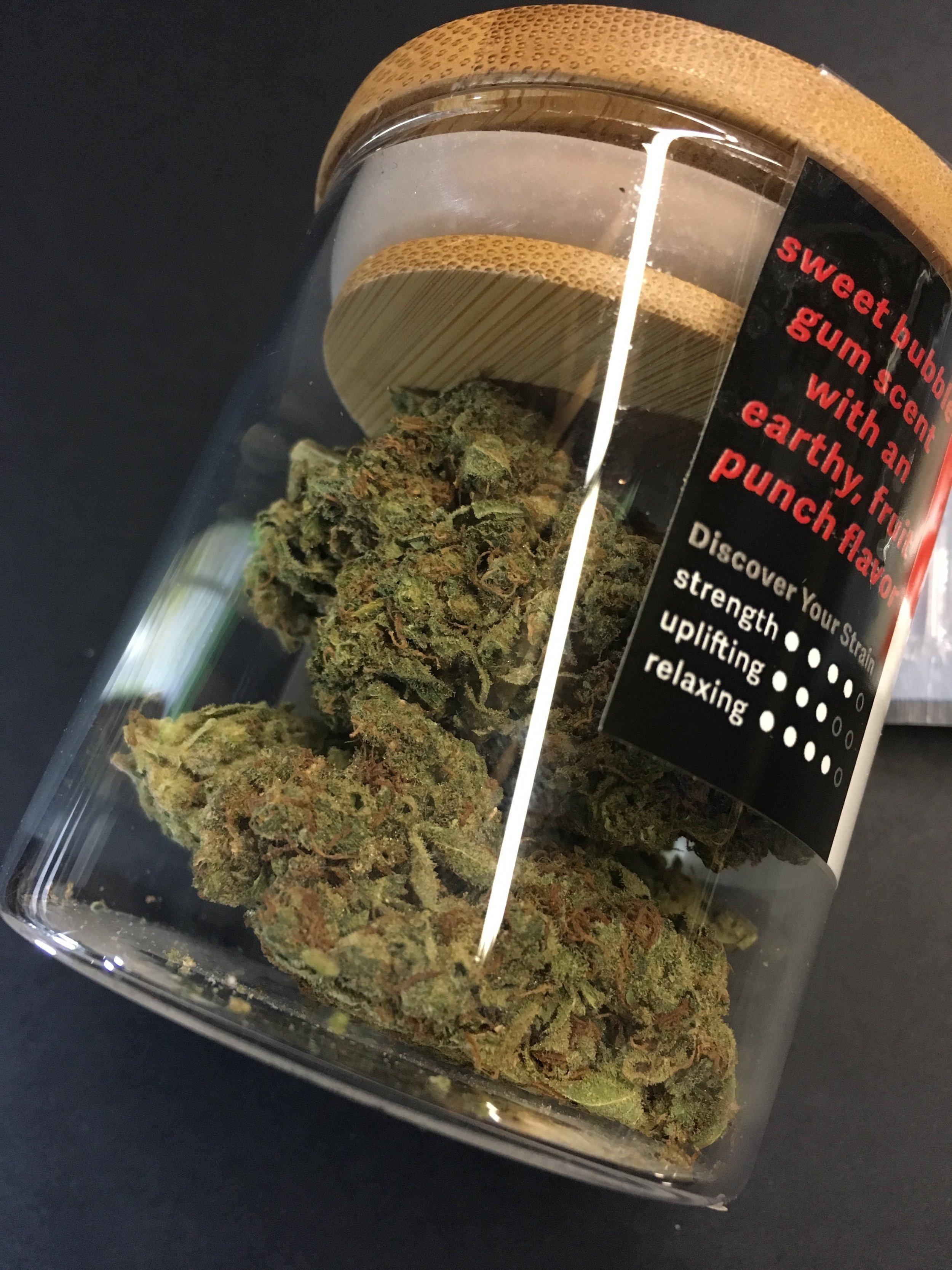 Coastal Cannabis Bubble Bud Ganja Goddess