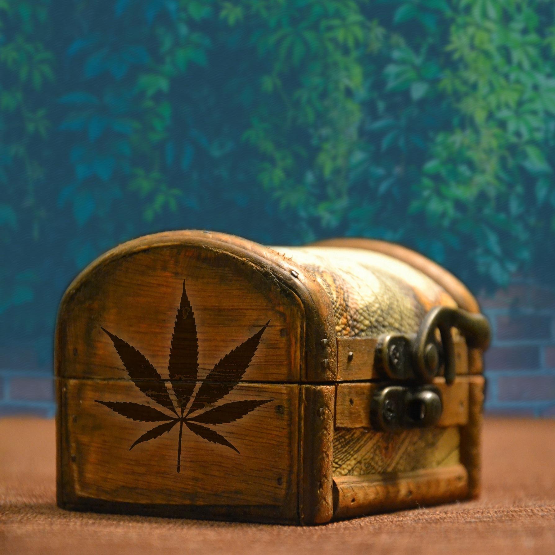 cannabis-storage.jpg