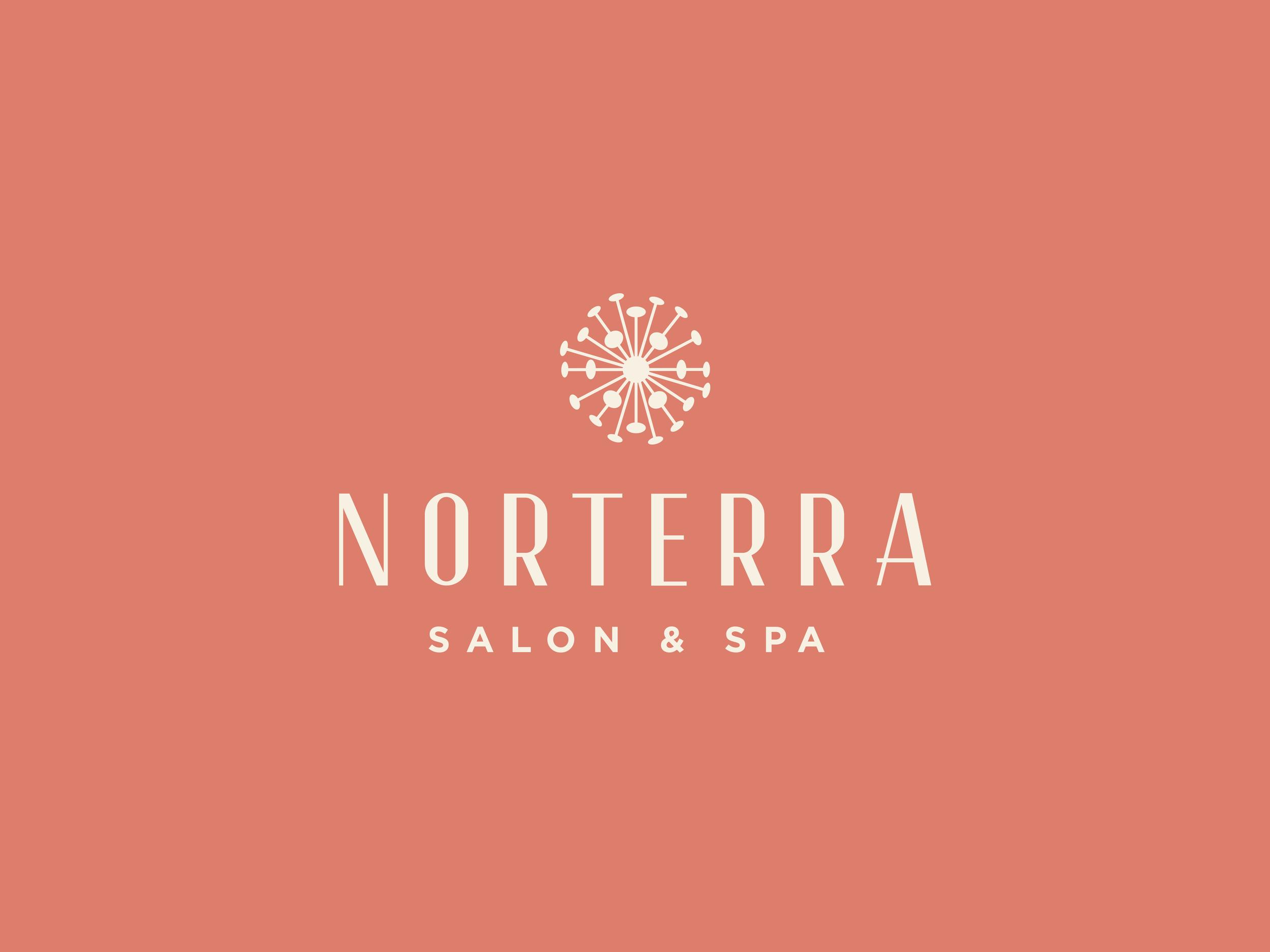 Norterra_Logo_Website_V1.png