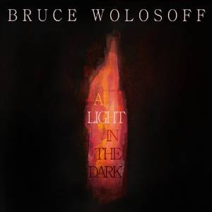 Bruce Wolosoff - A light in the dark (2013)
