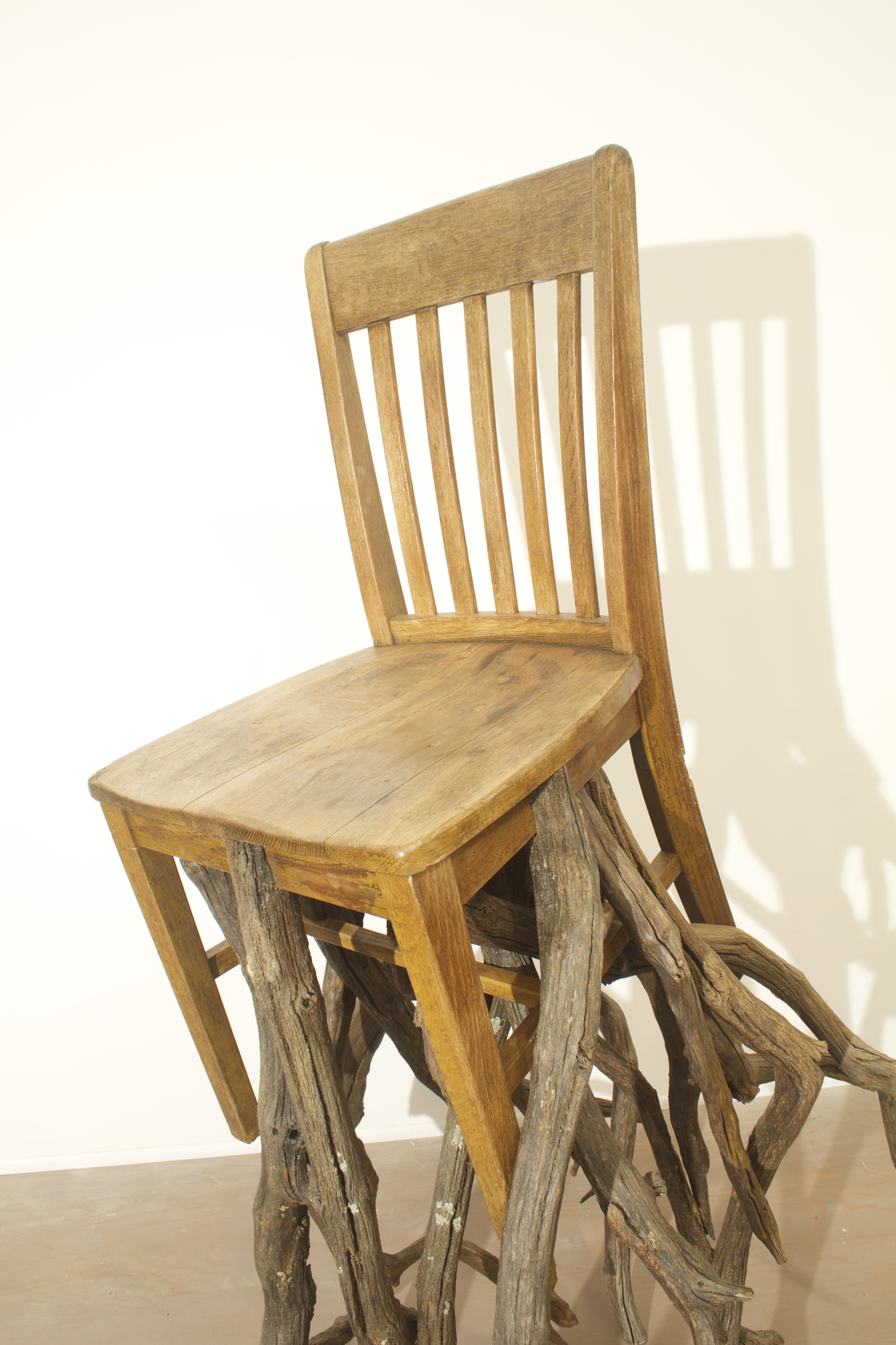 Oak, Chair  detail