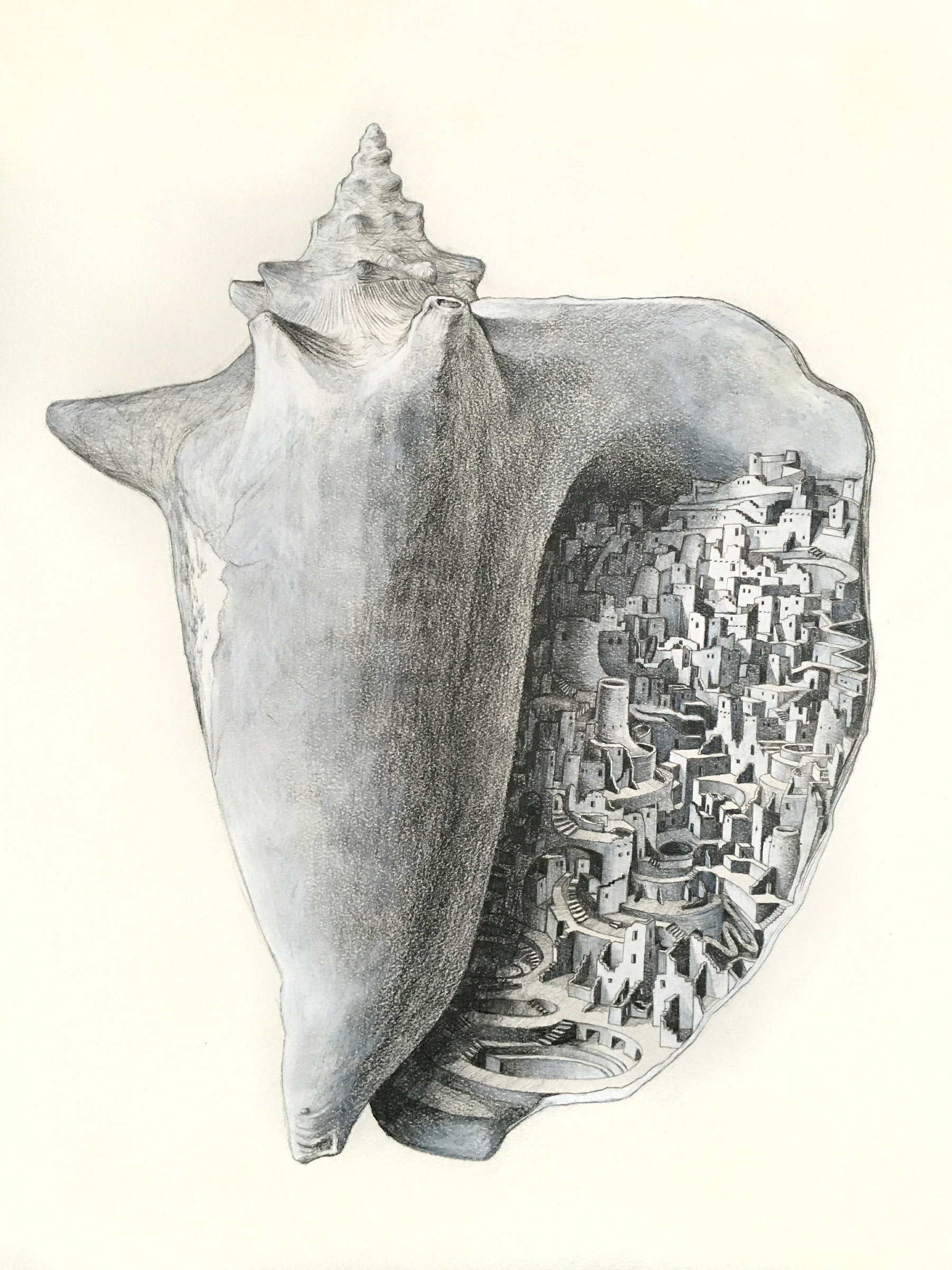"""City in a Shell    graphite and color pencil on paper  24"""" x 18""""  2015  (sold)"""