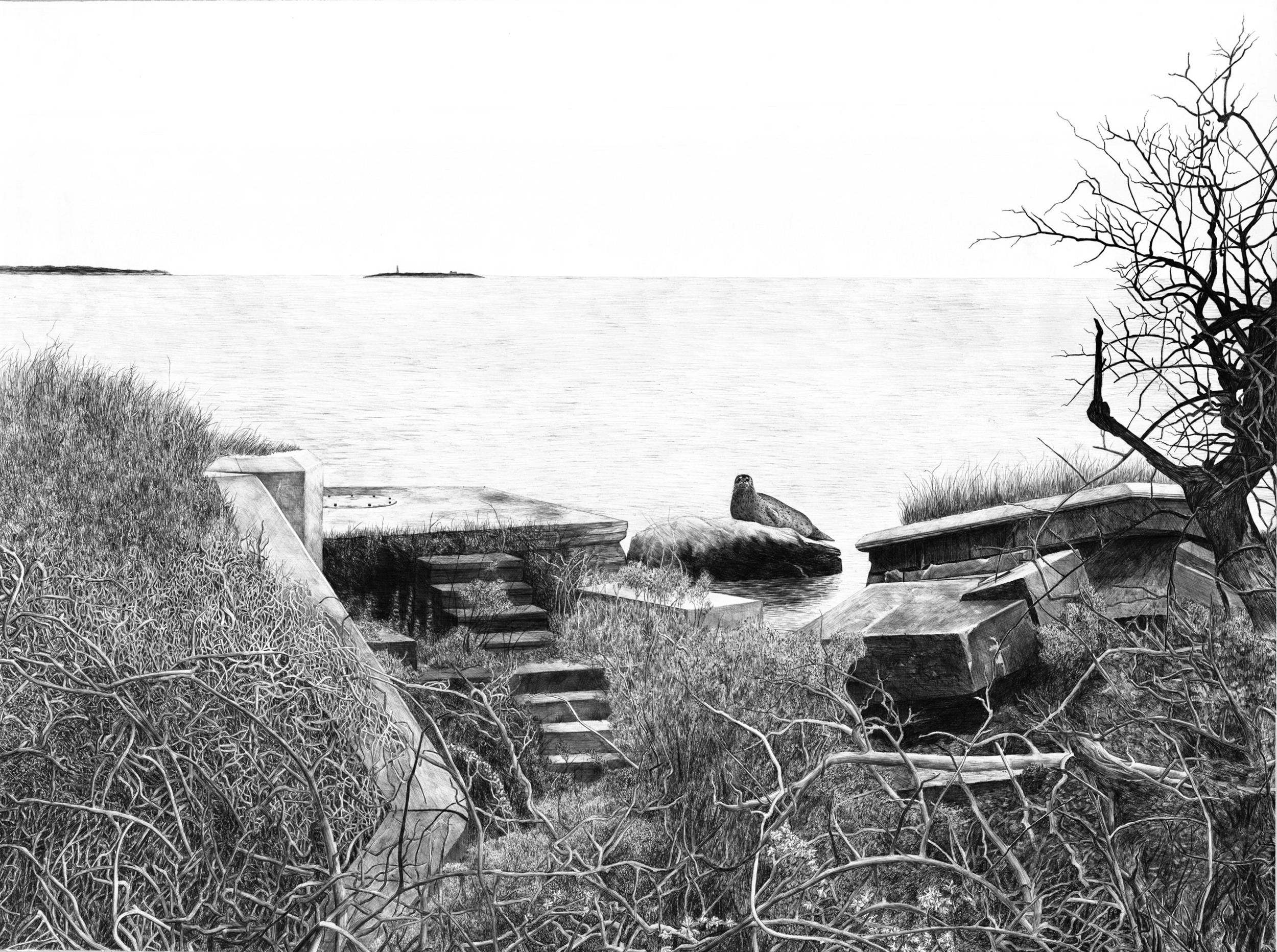"""Plum Island (from Forbidden Island project)    ballpoint on paper  33.5"""" x 45""""  2016  (sold)"""
