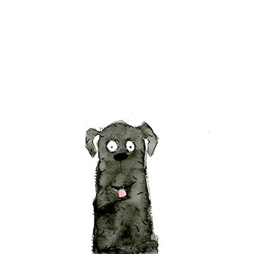black dog square.jpg