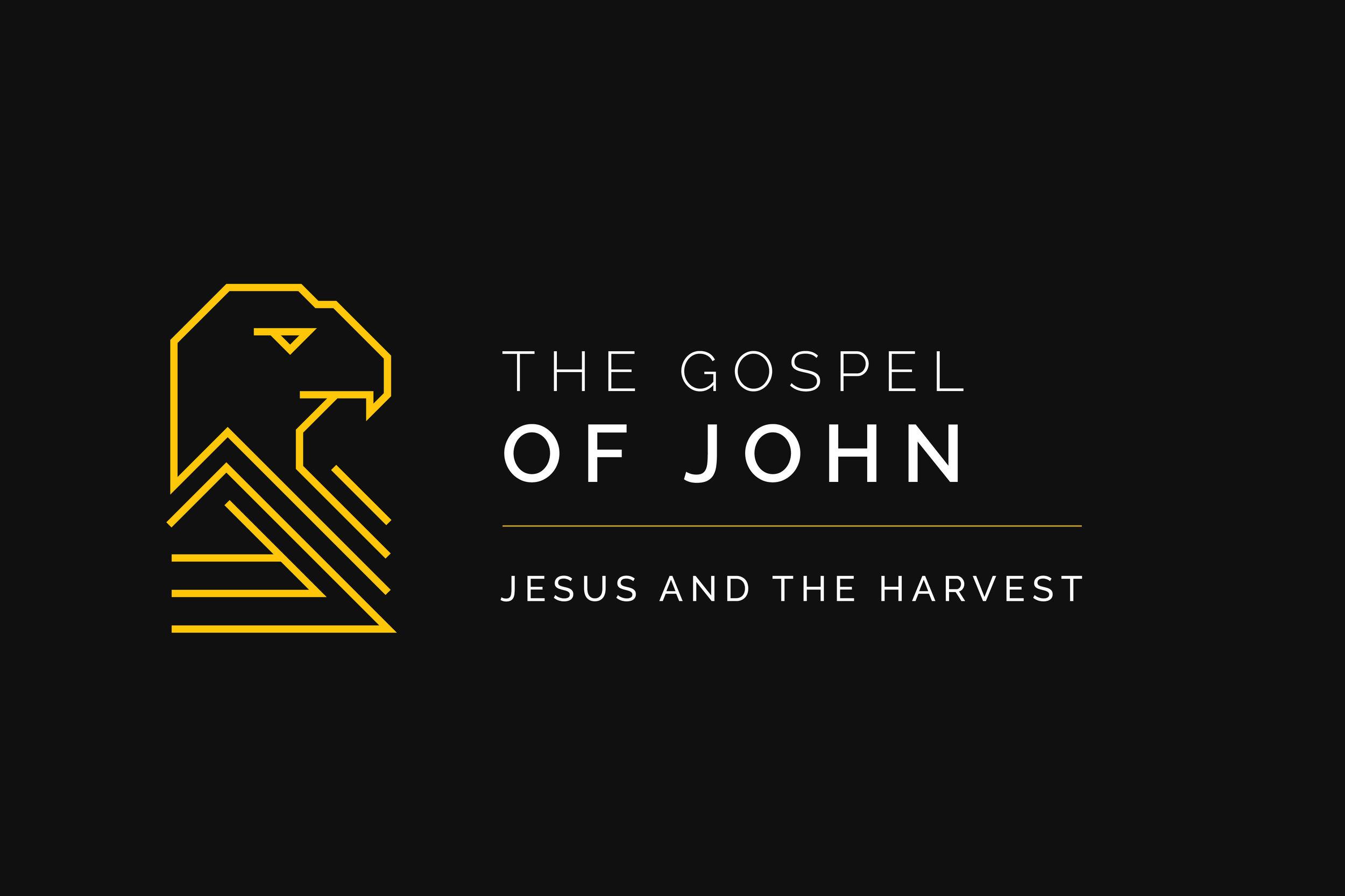07-The-Gospel-of-John--Jesus-and-the-harvest.jpg