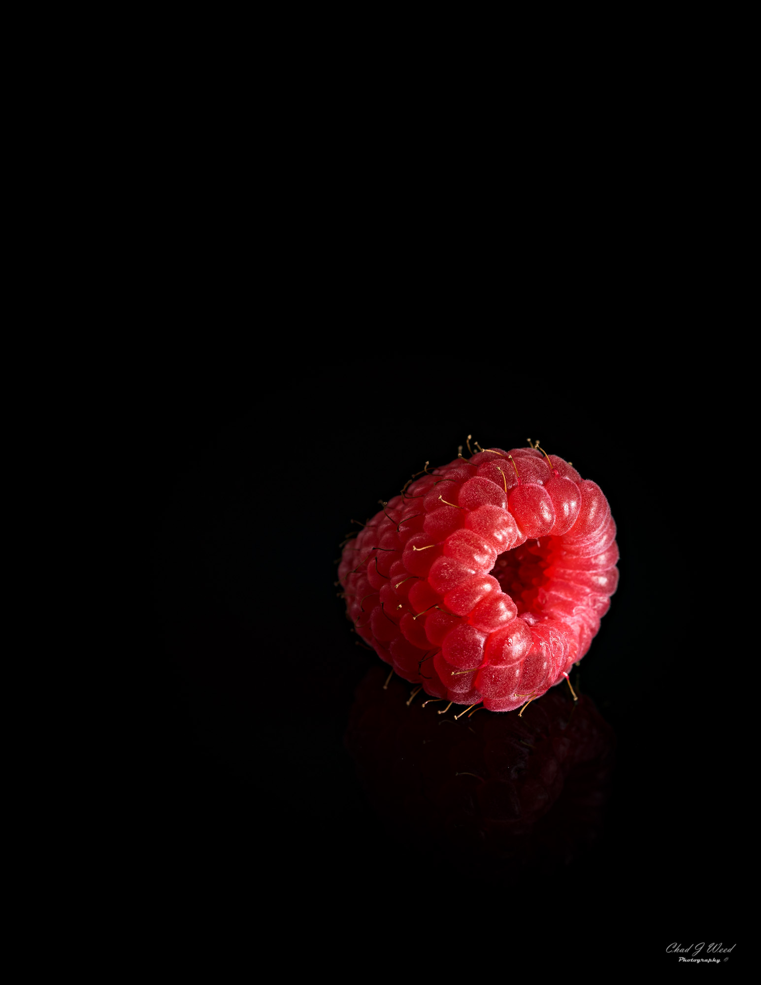 Raspberry by Arizona Commercial Food Photographer Chad J Weed