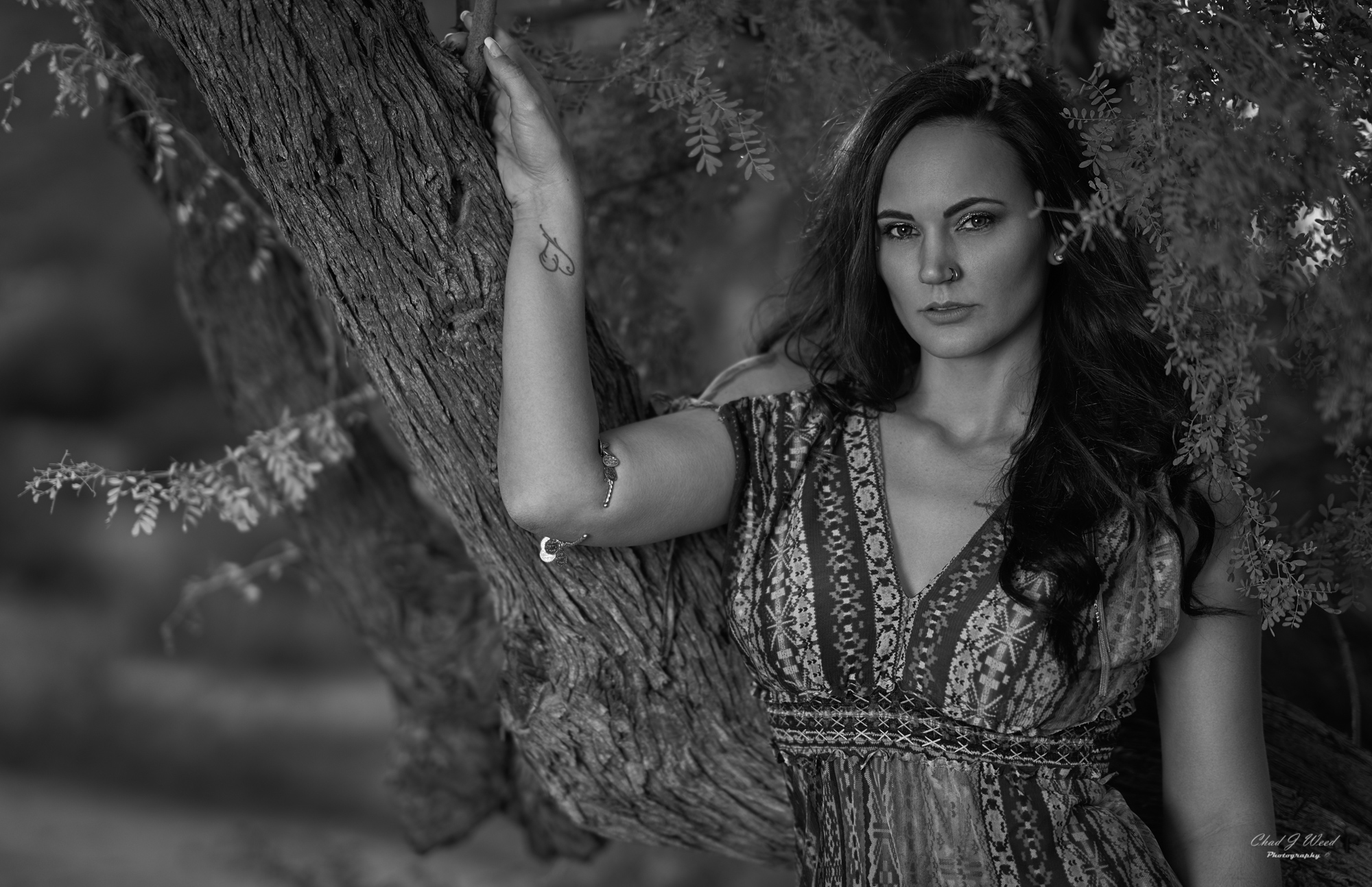 Erica's Beauty Shoot at Superstition Mountains by Mesa Arizona Portrait Photographer Chad Weed