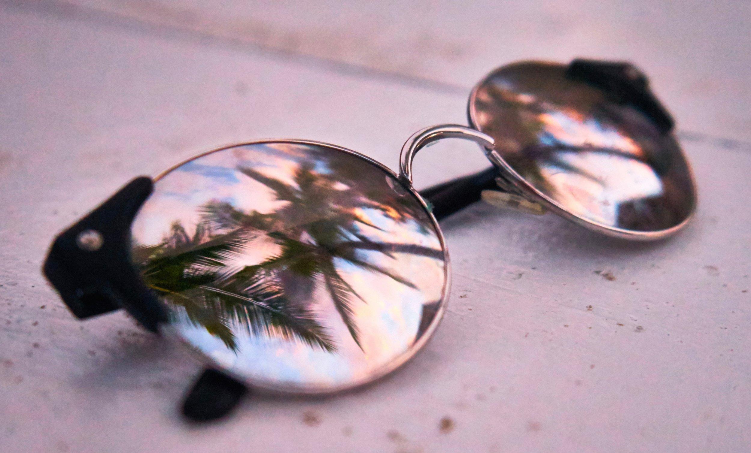 sunglasses_palmTree.jpg