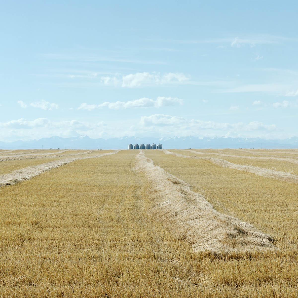 Six Bins, Alberta, 2005