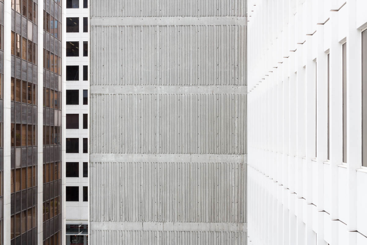 Among the Towers, Vancouver, 2014