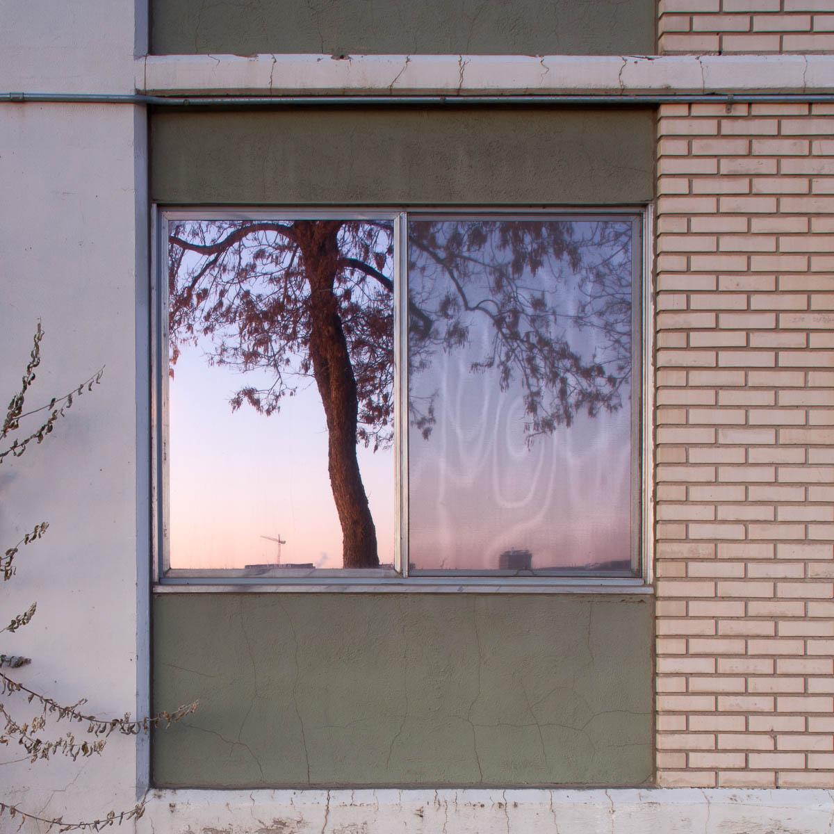 Reflected, Edmonton, 2012