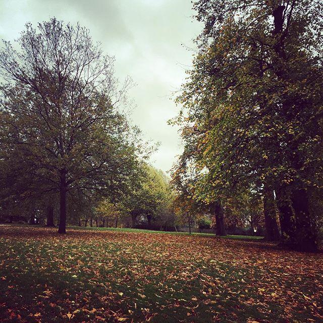 Definetly my favorite jogging spot 💪