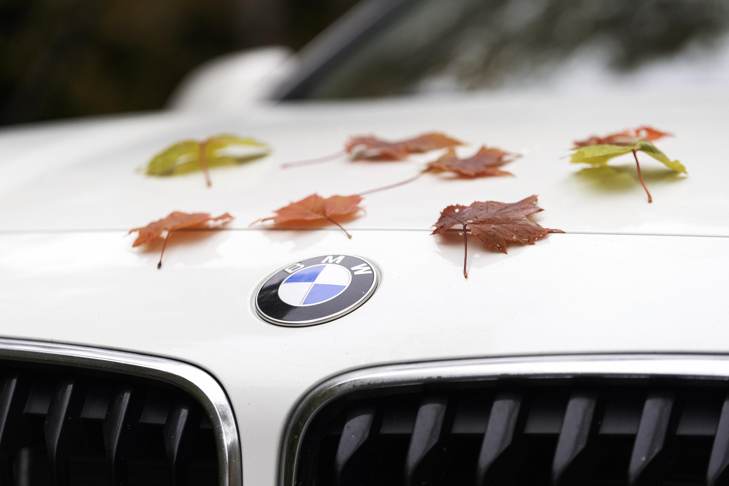 BMW_NS_34.jpg