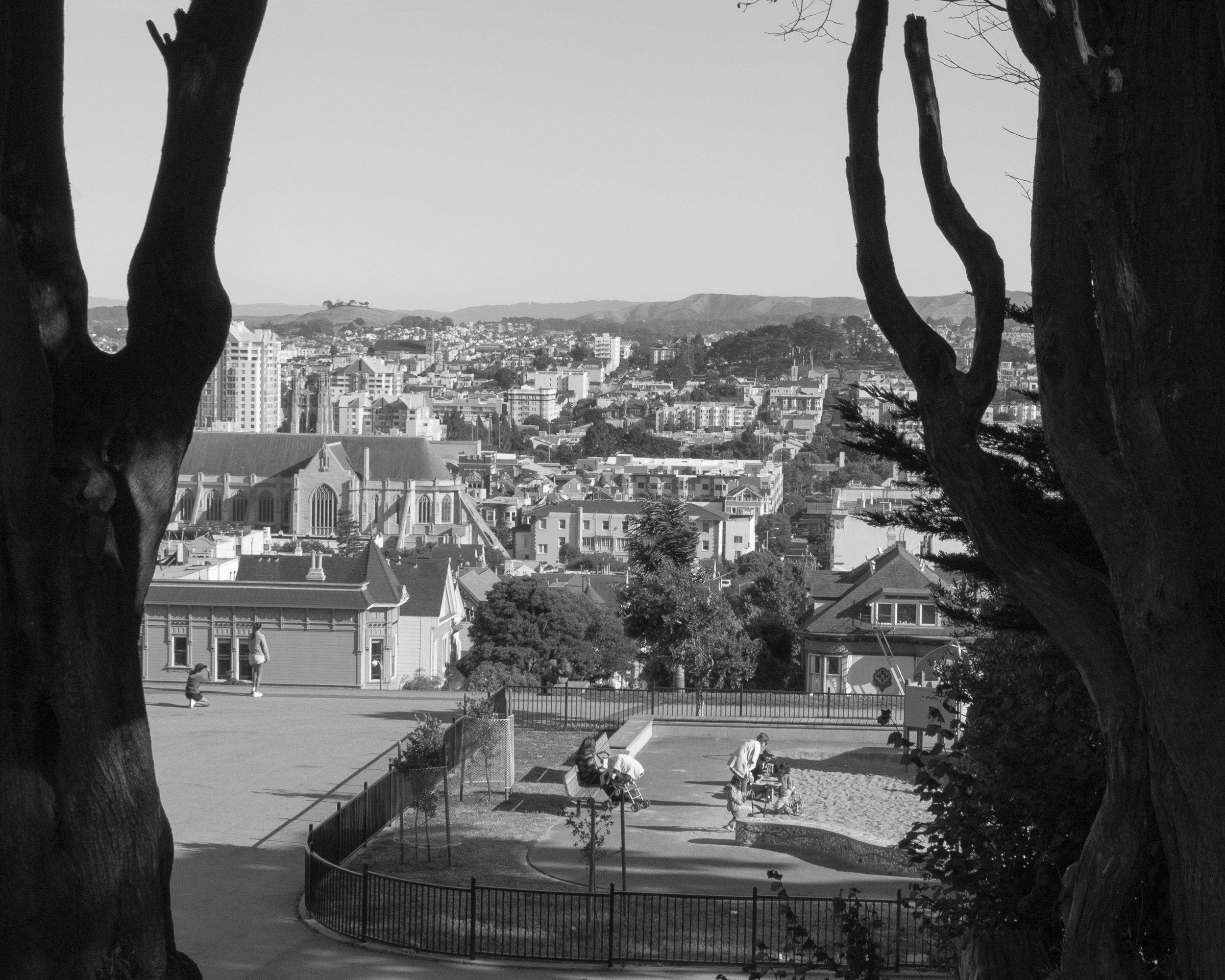 Landscape-1.jpg