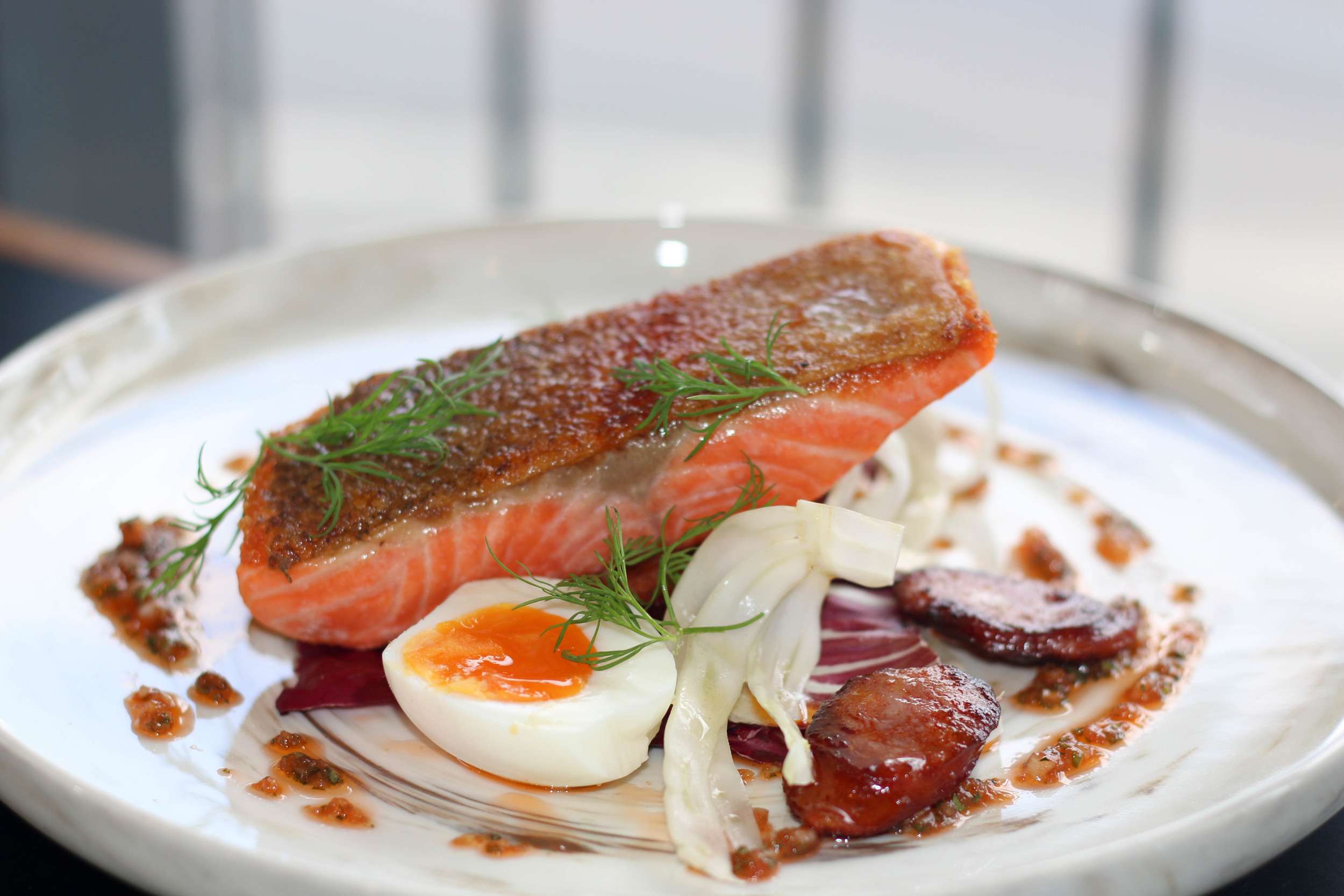 Pan fried ocean trout with fennel and chorizo