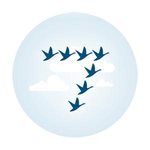7Geese logo.png