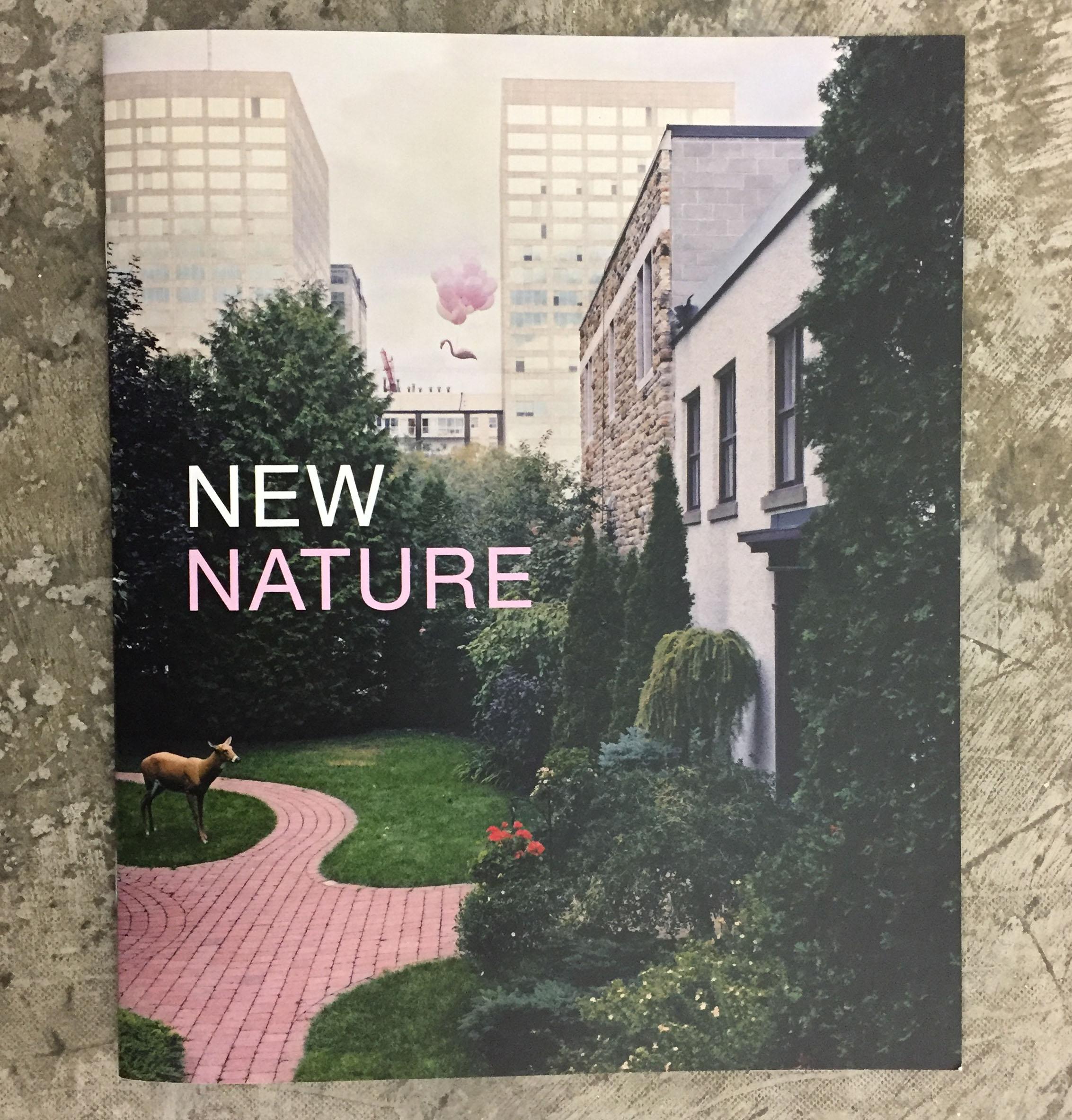 new-nature-matt-king.jpg