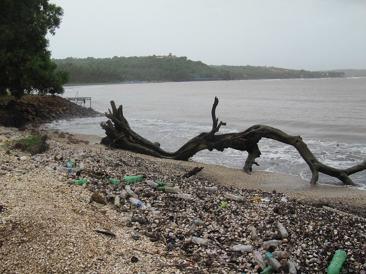 Plastic pollution often accumulates on beaches.