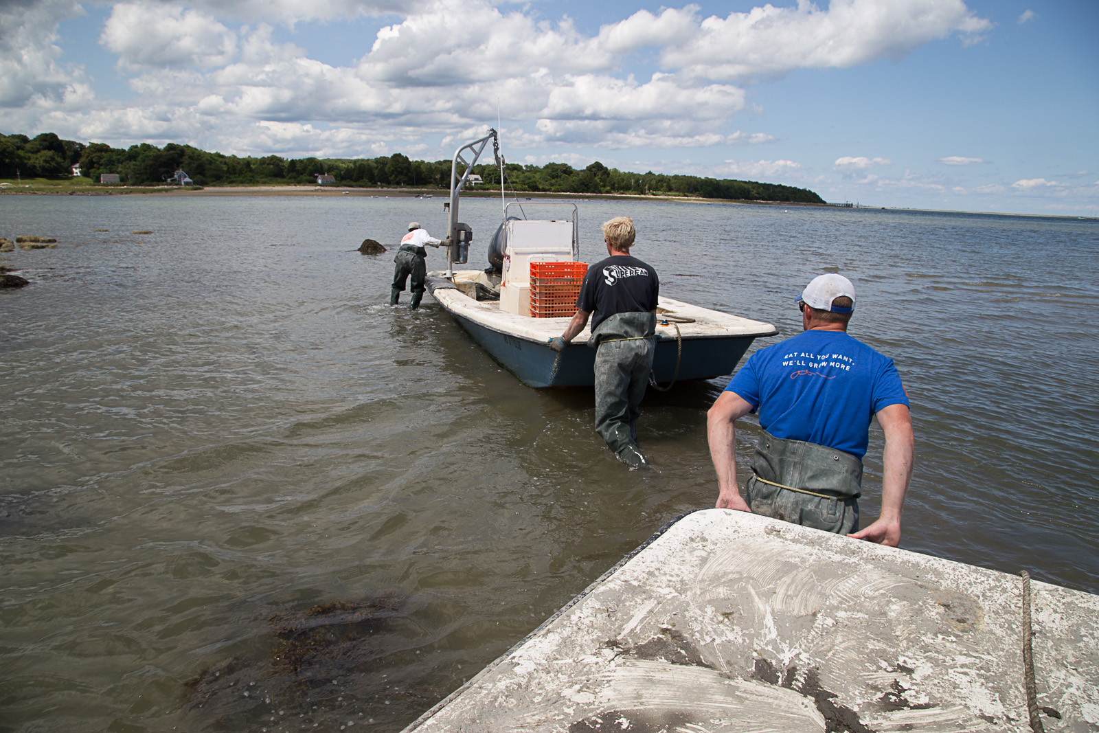 island_creek_oyster-2427.jpg