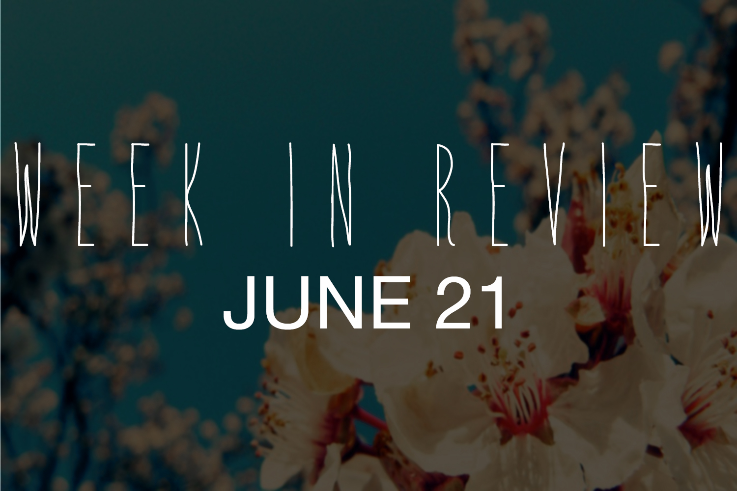 Week in Review; June 21 - Actively Gemma