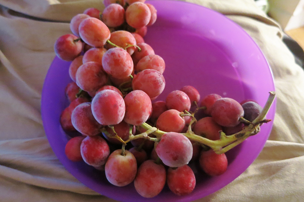 Frozen Red Grapes