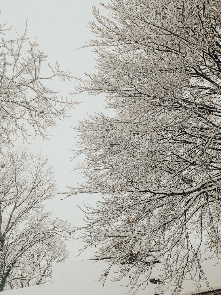 syracuse_snow_2.jpg