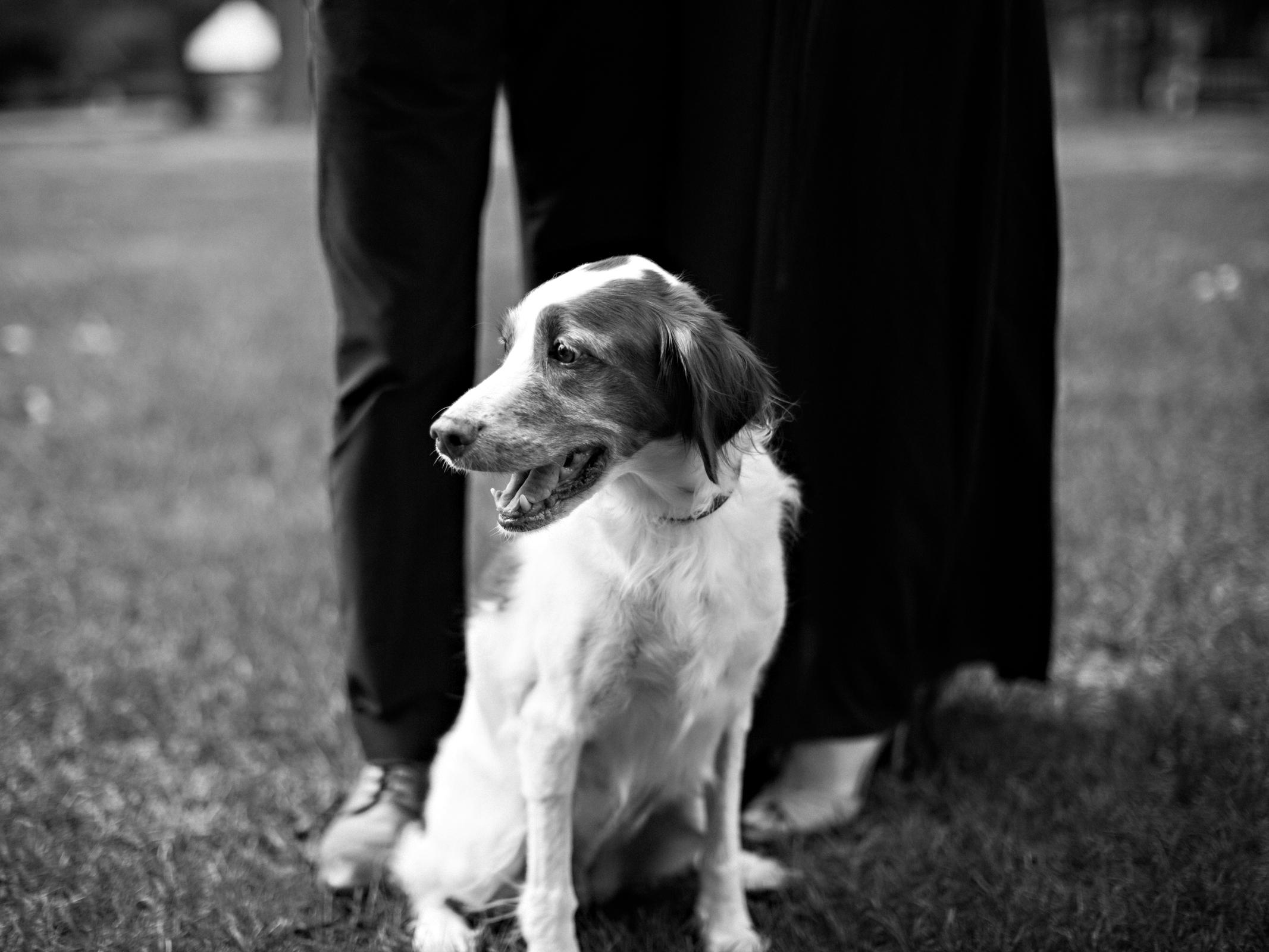 Nick-Drollette-Photography-Montgomery-Alabama-105.jpg