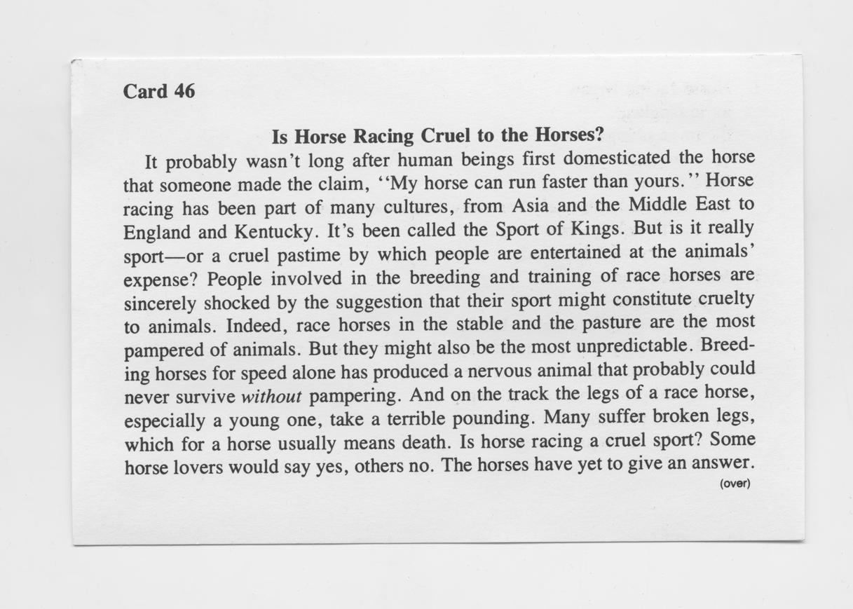 Is Horse racing cruel001.jpg