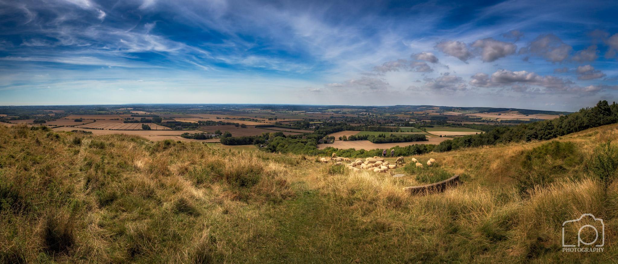 North Downs Way nr Wye Kent