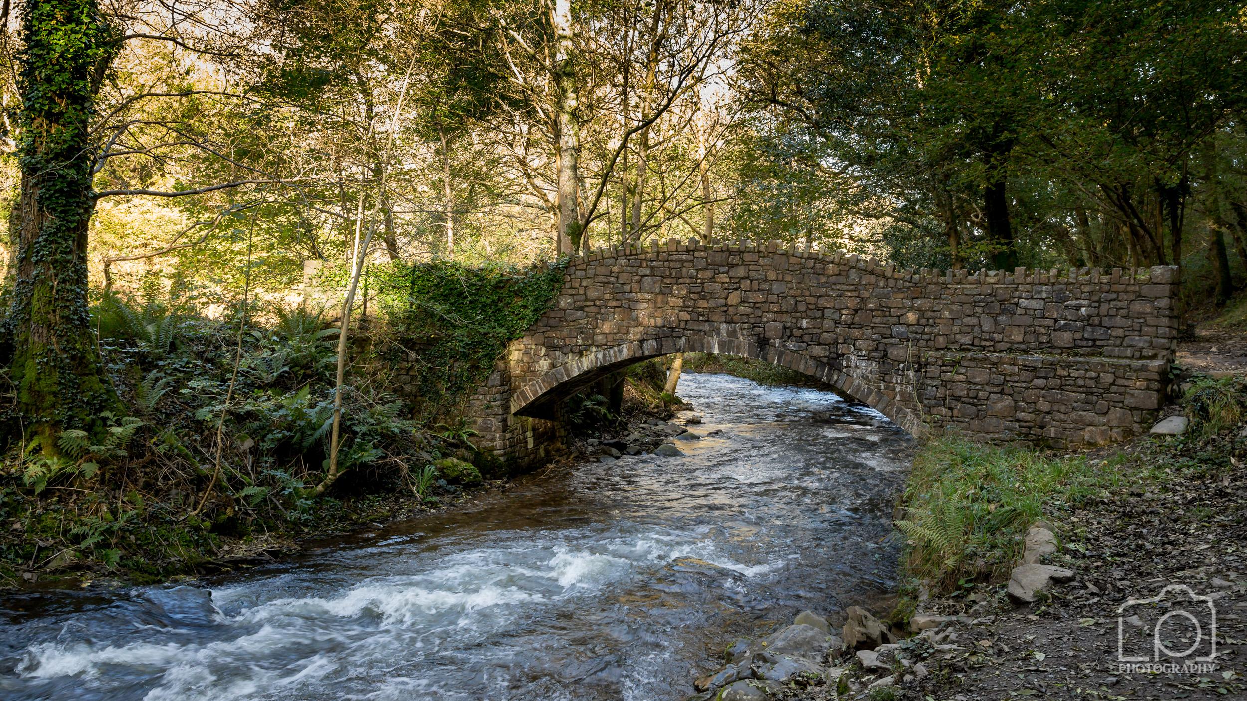 Bridge over River Heddon