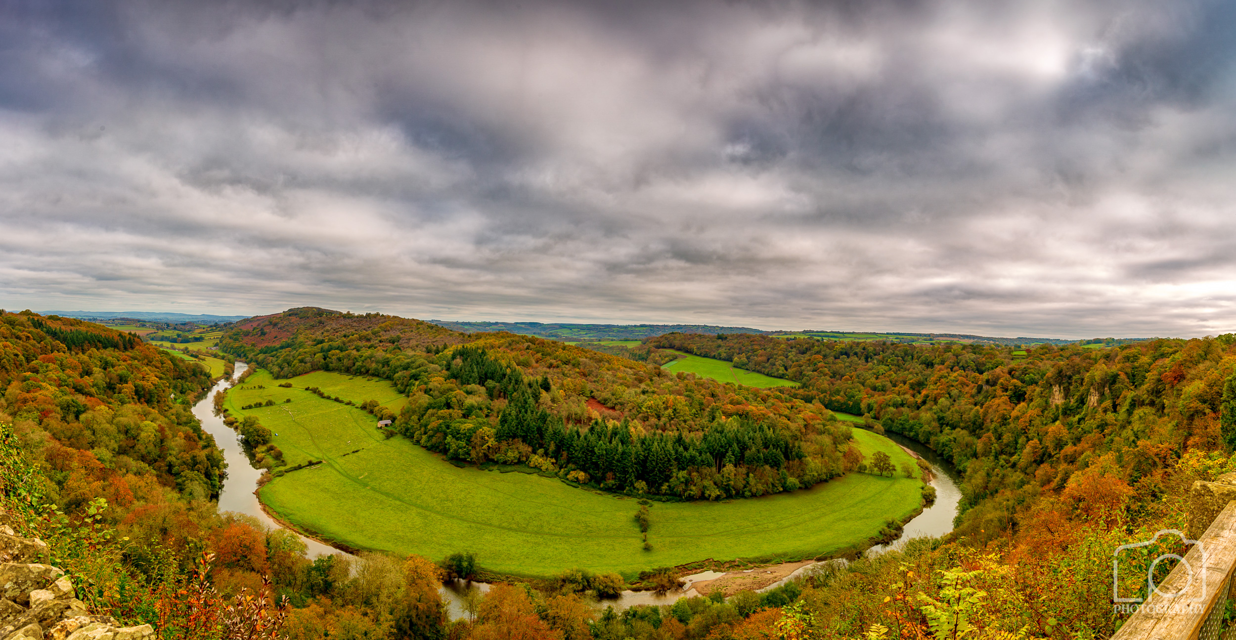 Forest of Dean Pano - 2674