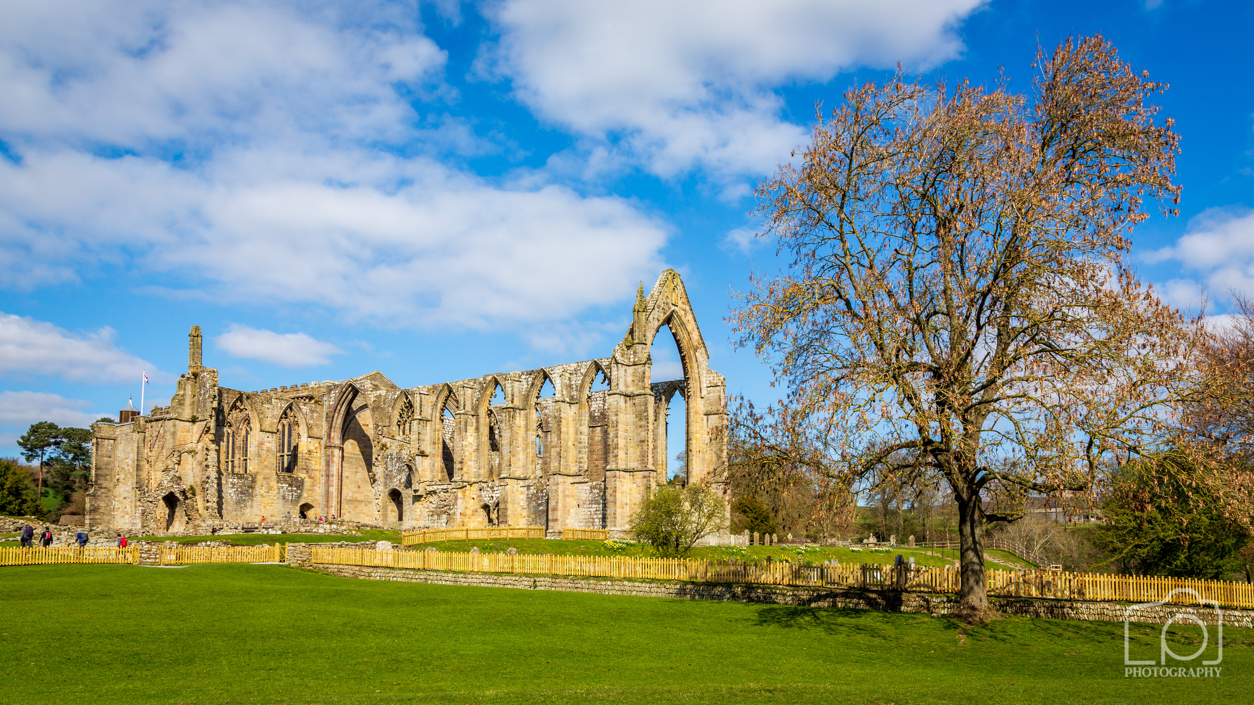 Bolton Abbey Yorkshire Dales-3074