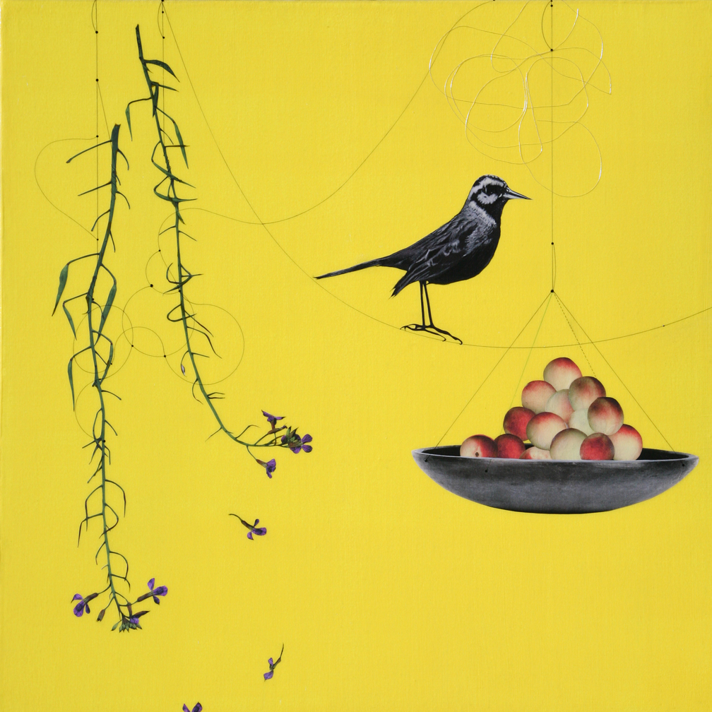 Plum and Bird #102