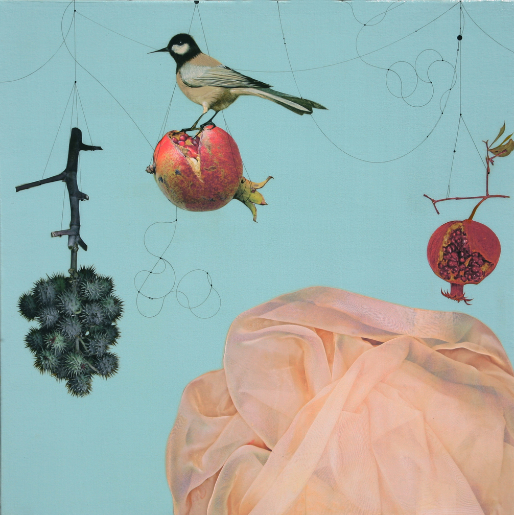 Castor Bean,Pomegranate and bird