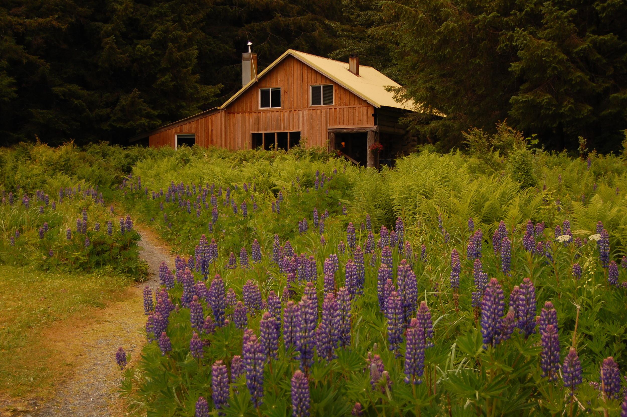 Alaskan wilderness lodge
