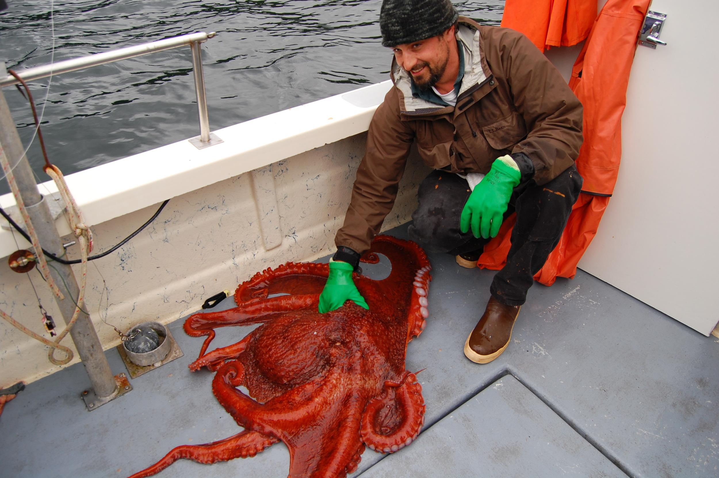 Alaskan Fishing Guide