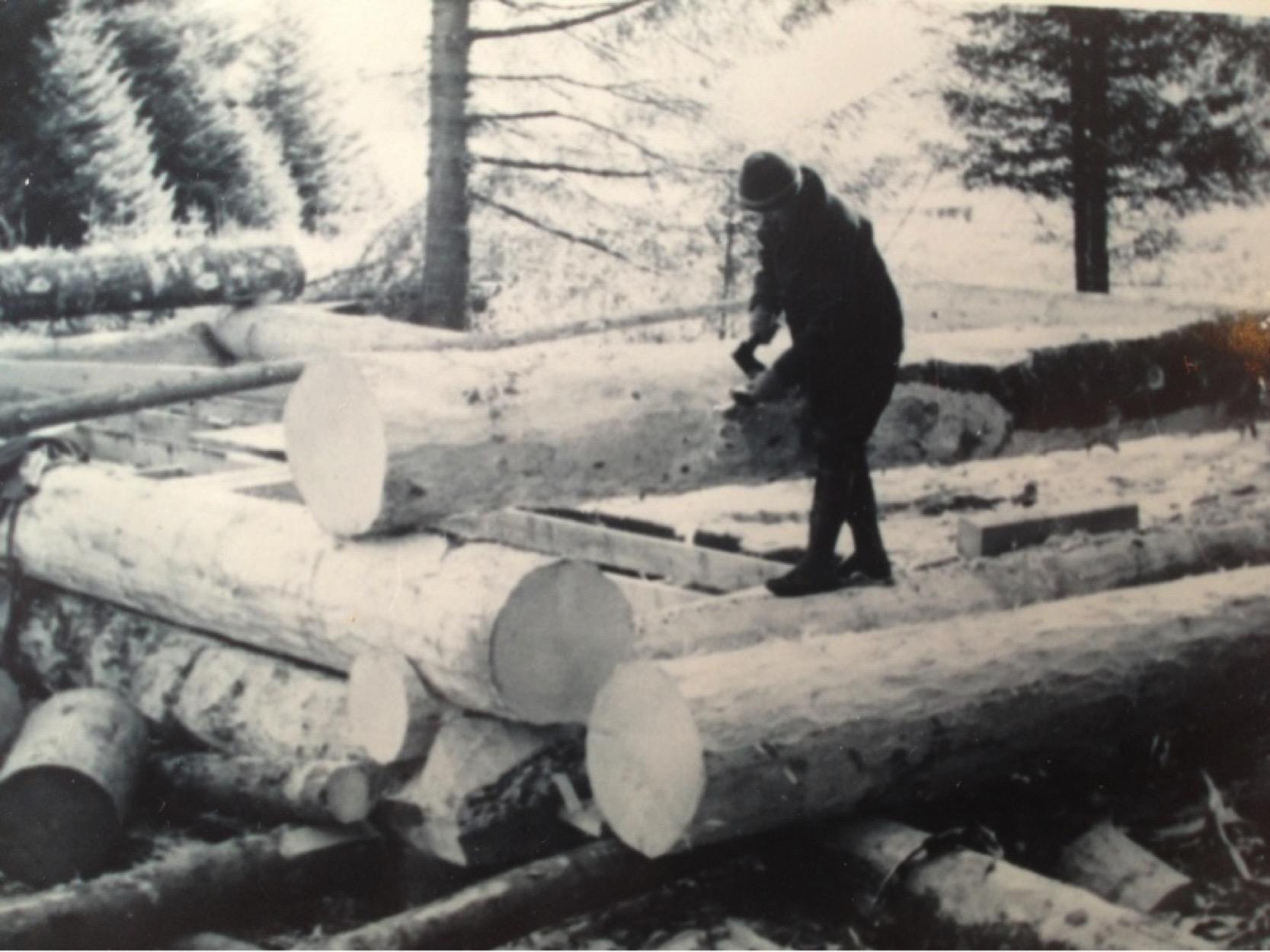 early days Lisianski Lodge.jpg