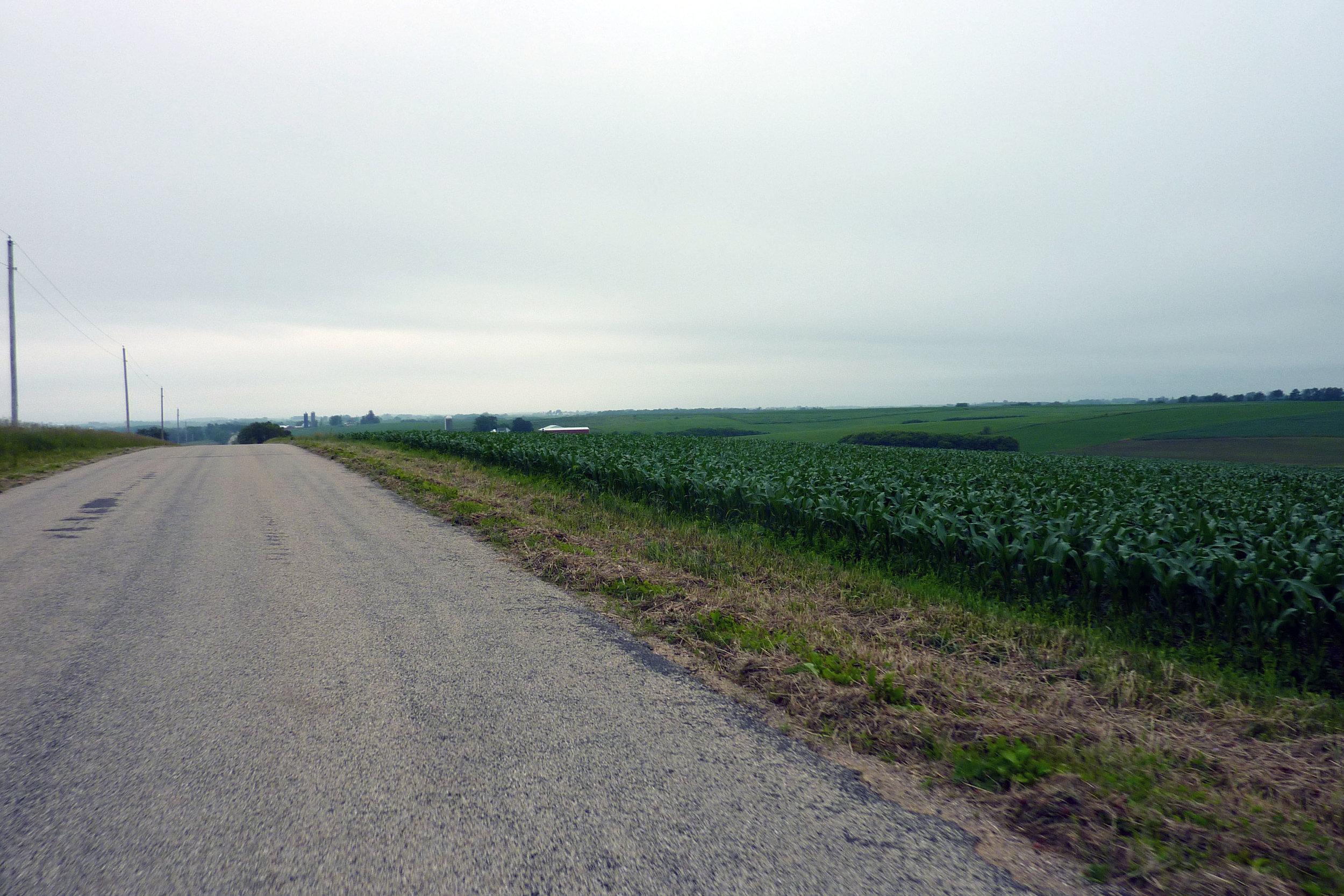 Farm 004.jpg