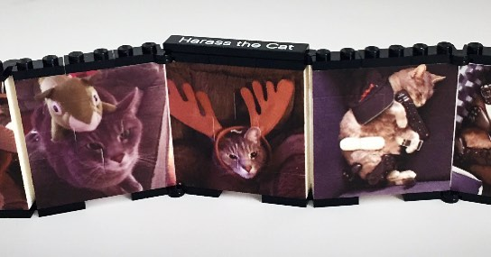 Marvin is the most chill cat ever, loved by his owner, and  printed on a folding LEGO wall.