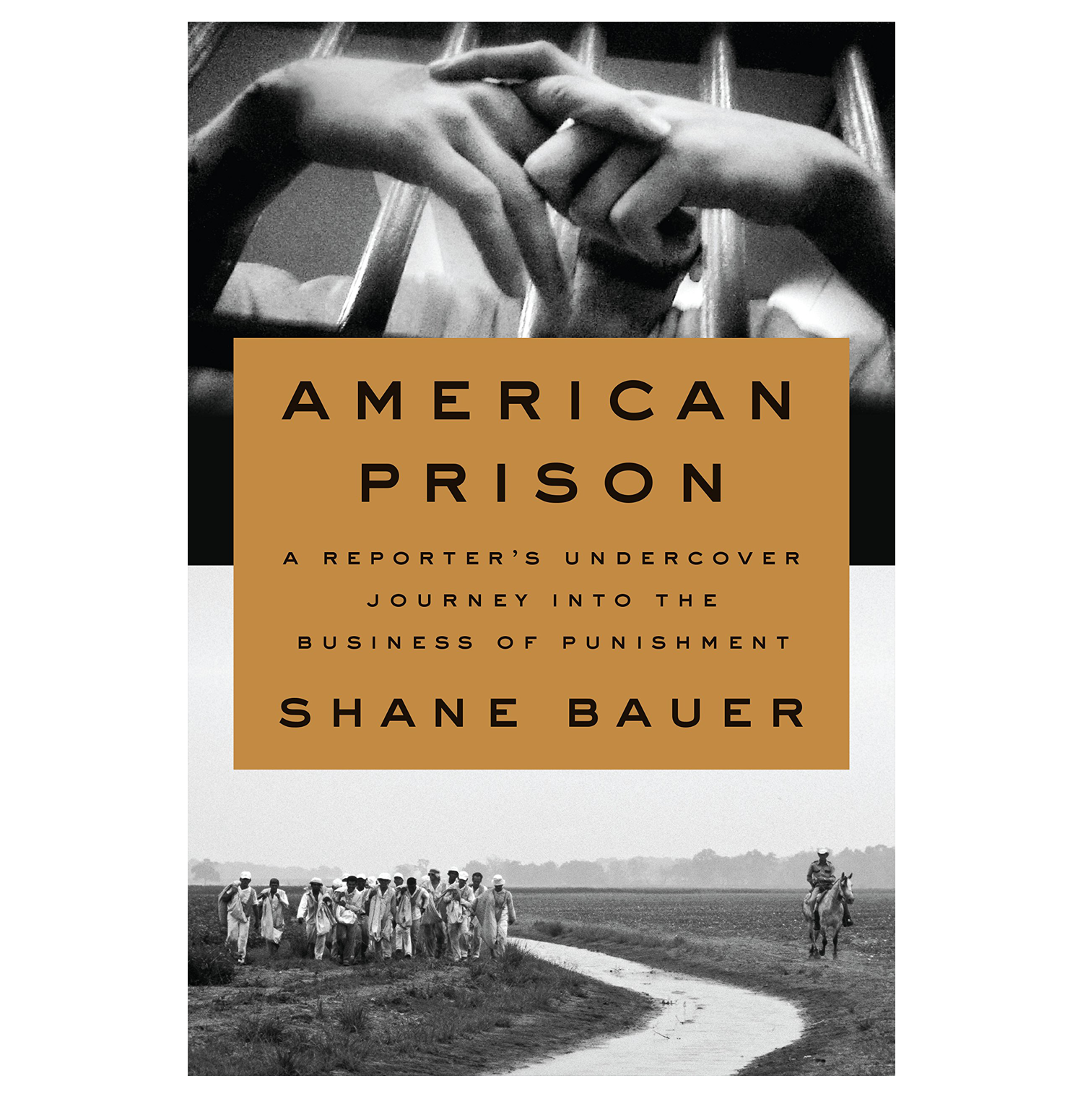 AMERICAN PRISON website.png
